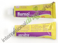 Burnol Cream 20g